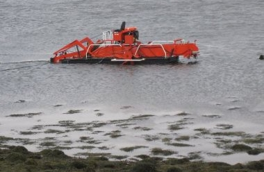 seaweed cutting machine.jpg